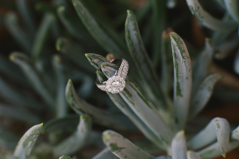 engagement session succulent ring shot photo