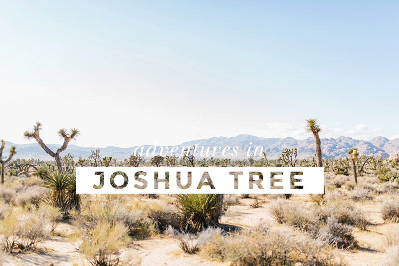 joshua tree engagement session vacation inspiration