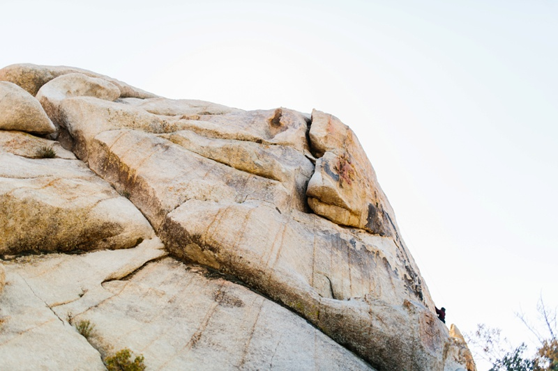 rock climbing joshua tree photo